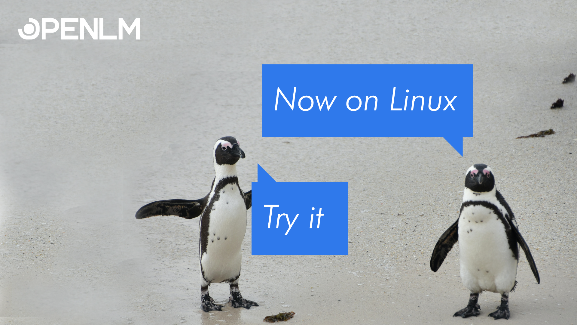 OpenLM – Embracing the Linux world